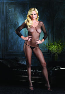 Long Sleeved Fishnet Body Stocking
